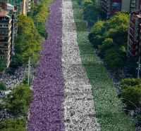 processions-2018_-courtesy-of-artichoke