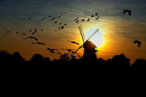 sunset-610097_1920